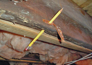 Destroyed crawl space structural wood in Saint Johnsbury